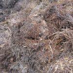 Kompostbelüftungsschaufel
